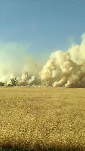 Rolling Fire in Madera County burning rapidly toward the cattle ranch <span class=meta>(KFSN Photo&#47; uReport &#47; Nielsen 5 Photography)</span>