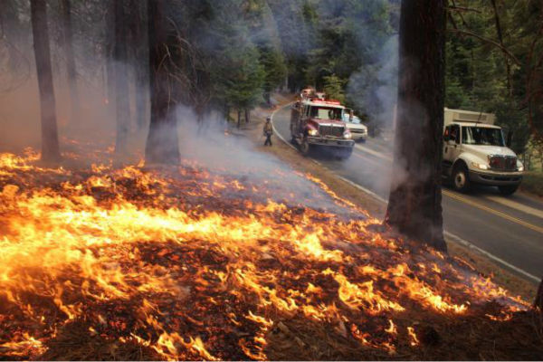 "<div class=""meta ""><span class=""caption-text "">Highway 120 Burn Ops and Engines (KFSN Photo/ Mike McMillan - USFS)</span></div>"