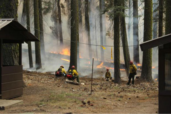Firefighters Hold Line at Crane Flats <span class=meta>(KFSN Photo&#47; Mike McMillan - USFS)</span>