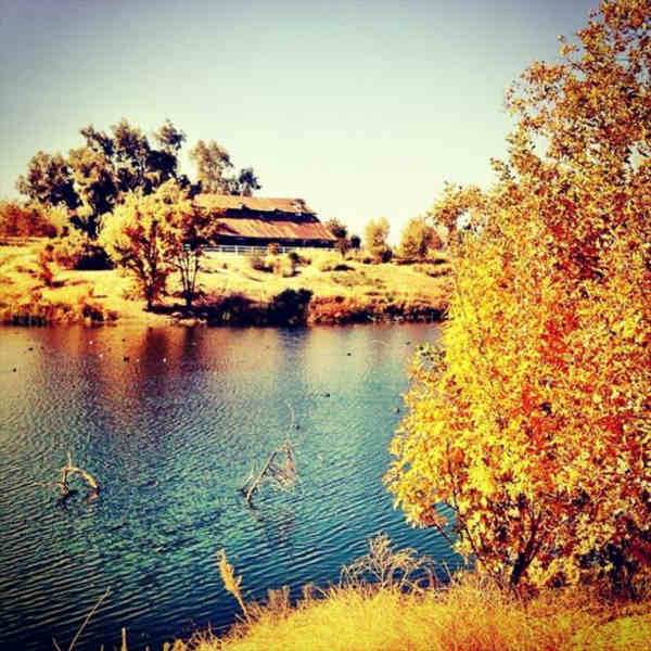 "<div class=""meta ""><span class=""caption-text "">#fallinfresno Happy Monday (KFSN Photo/ Instagram / tvnewsmom)</span></div>"