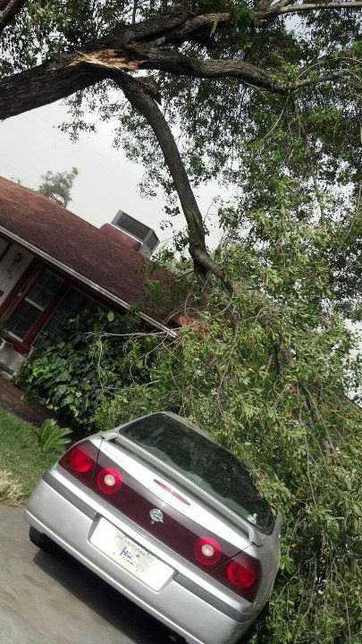 Viewer pictures of a wind storm that kicked up Monday afternoon in the Central Valley.  Images submitted to uReport@kfsn.com or www.facebook.com/abc30.com.