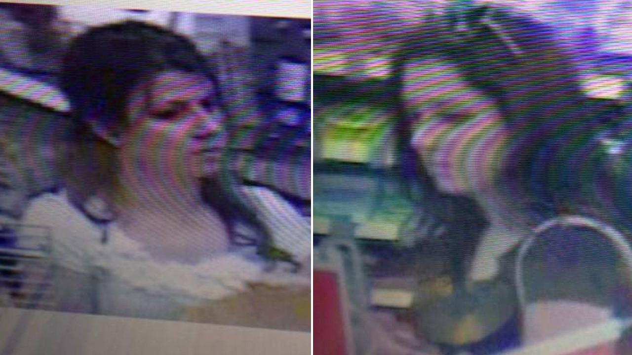 Clovis police seek 2 Walmart burglary suspects