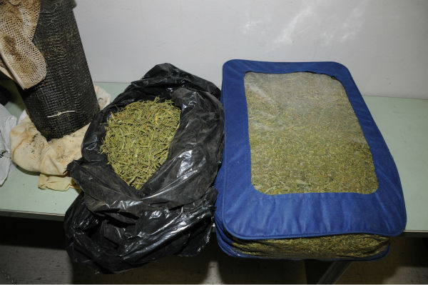 "<div class=""meta image-caption""><div class=""origin-logo origin-image ""><span></span></div><span class=""caption-text"">The Fresno Police Department discovers a significant amount of marijuana being processed into hashish while serving a search warrant. (Photo/Fresno Police Department)</span></div>"