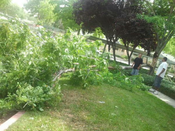 Viewer pictures of a wind storm that kicked up Monday afternoon in the Central Valley.  <span class=meta>(uReport@kfsn.com or www.facebook.com&#47;abc30.com)</span>