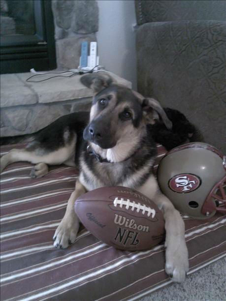 "<div class=""meta image-caption""><div class=""origin-logo origin-image ""><span></span></div><span class=""caption-text"">Bentley says ""Go Niners"" (KFSN Photo/ uReport)</span></div>"