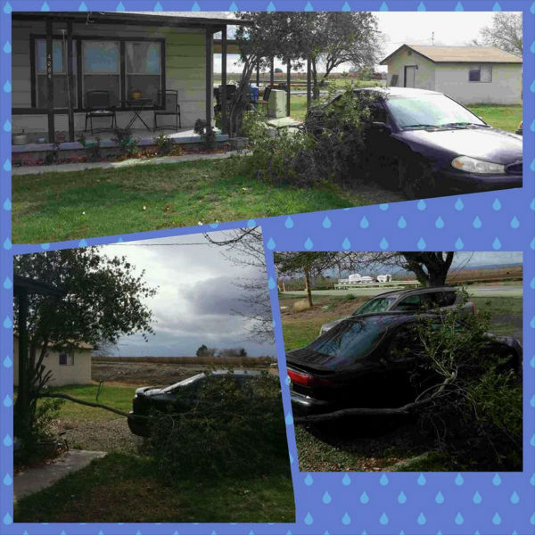 House on San Diego Ave. in Firebaugh! The wind is crazy!  <span class=meta>(KFSN Photo&#47; Facebook &#47; Traci Robertson)</span>