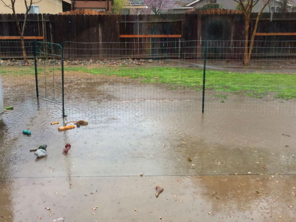 Rain in Visalia. <span class=meta>(KFSN Photo&#47; Facebook &#47; Heather Stokes-Laird)</span>