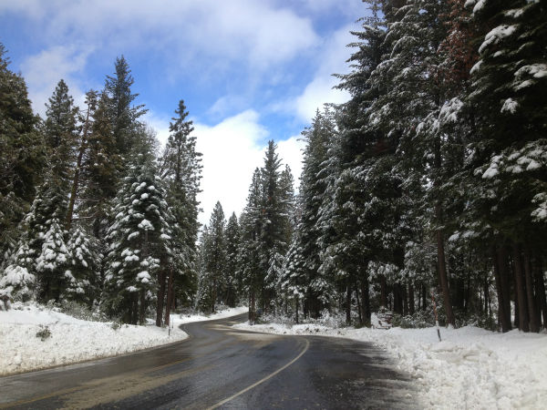 The road to Shaver Lake. <span class=meta>(KFSN Photo)</span>