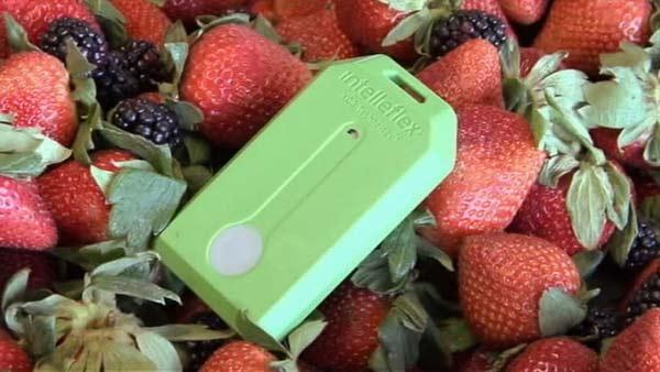 Wireless technology helping keep food safe