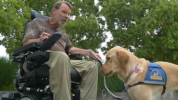 ABC7 salutes Canine Companions for Independence