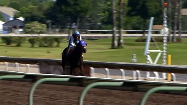 Investigation into jockey's death begins in Pleasanton