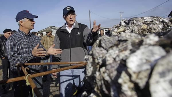 Interior Secretary to decide CA oyster farm's fate