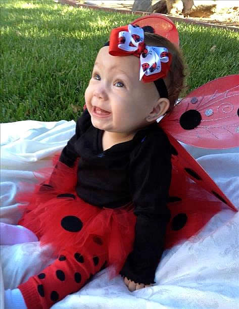 """Baby's 1st Halloween Lady Bug costume made by mom."" (Submitted by dmadero via uReport)"