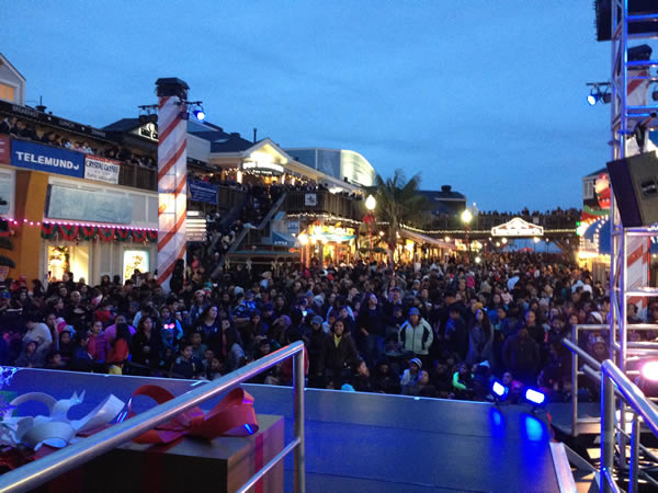 Pier 39s Tree Lighting Celebration