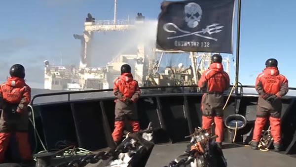 Anti-whaling group calls 9th Circuit 'pirates' ruling ludicrous