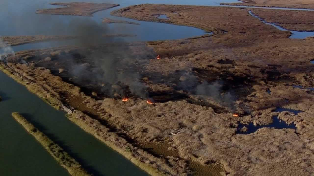 Fire and U.S. Coast Guard crews are responding to a brush fire on  a sparsely inhabited island in Suisun Bay.