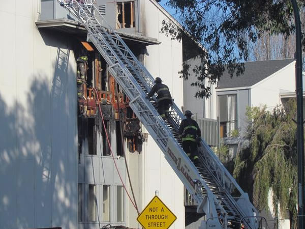 A firefighter rescues a puppy from a burning apartment building in Alameda on Saturday, Dec. 17, 2011. Photo submitted to uReport by Chris Hirneisen.