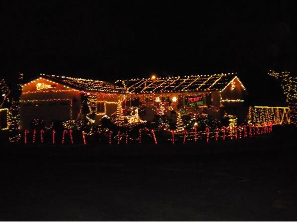 Holiday lights.  (Photo submitted by an anonymous viewer via uReport)
