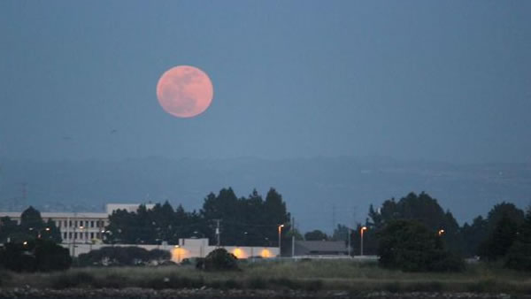 Many viewers all around the Bay Area sent in their photos of Saturday night's supermoon. (Photo submitted by Diane Beardsley via uReport)