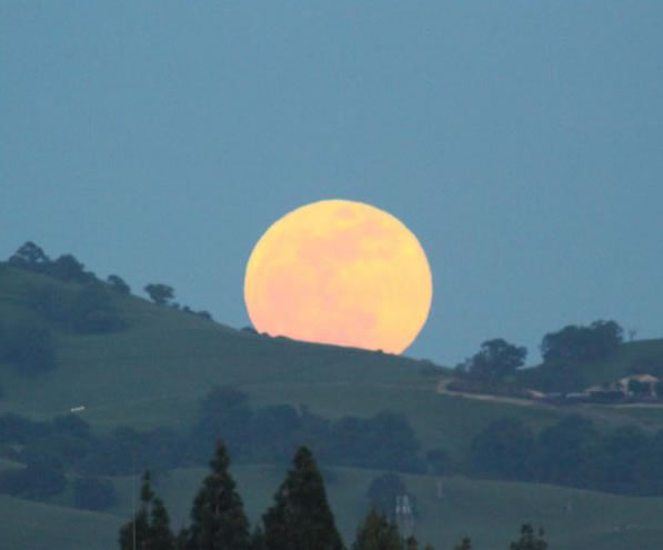 Many viewers all around the Bay Area sent in their photos of Saturday night's supermoon. This photo was taken in Concord.  (Photo submitted by Leslie P. via uReport)
