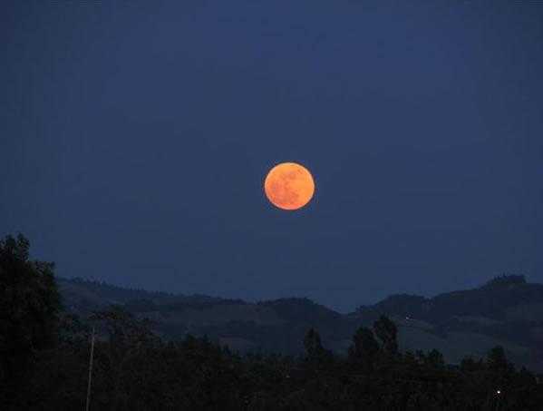Many viewers all around the Bay Area sent in their photos of Saturday night's supermoon. This photo was taken in Santa Rosa. (Photo submitted by Rebecca S. via uReport)