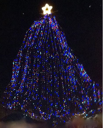 Los Gatos held its annual Christmas tree lighting ceremony Friday evening at 6 p.m. in the town plaza.  (Photo submitted by an anonymous viewer via uReport)