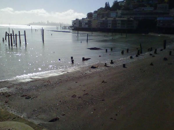 These photos were taken on Friday morning from a doc in the south end of Sausalito.  (Photo submitted by Sara Hydestate via uReport)