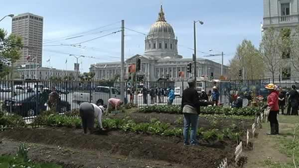 Urban oasis bringing nutrition to Tenderloin