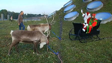 Santa and his reindeer are now in residence on top of the California Academy of Sciences in Golden Gate Park.