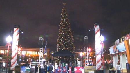 San Francisco Pier 39 Christmas tree