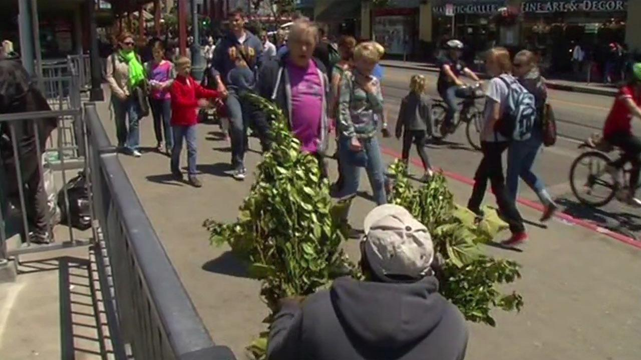 Bushman in San Francisco scaring tourists near Pier 39.