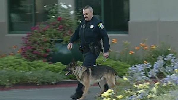 Santa Clara PD adds new K-9 thanks to donation