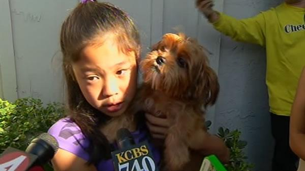 San Jose girl reunited with stolen puppy