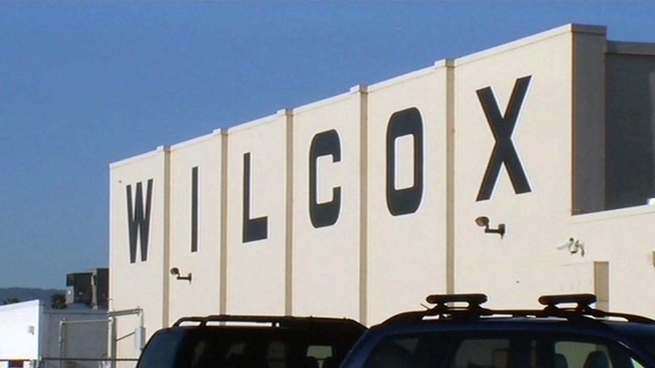 Animals killed in vandalism at wilcox high school in santa for Academy salon santa clara