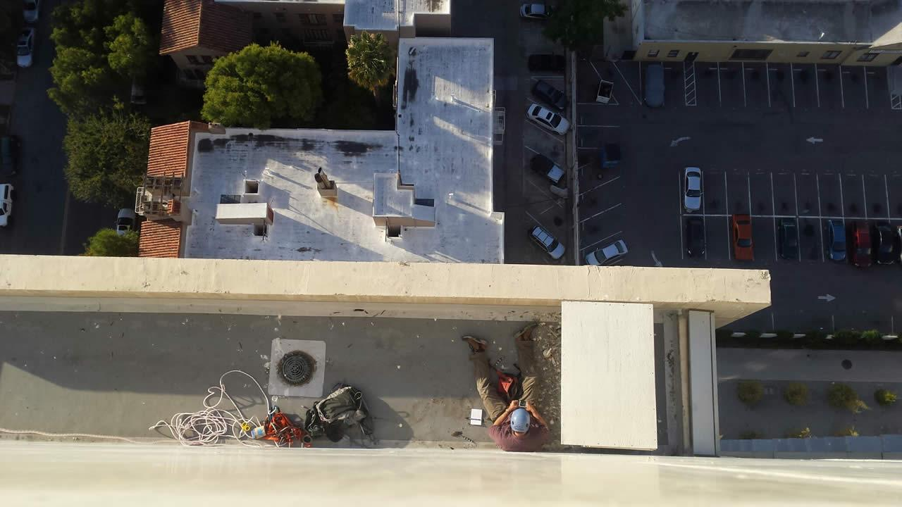 A  researcher rappelled down the side of San Joses City Hall and placed ID bands on four peregrine falcon chicks inside a nestbox.