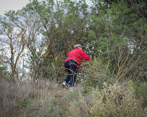 On Tuesday, March 27, 2012, volunteers searched Morgan Hill for any clues in the disappearance of Sierra LaMar.  (Photo courtesy photographer Jayne Porras)