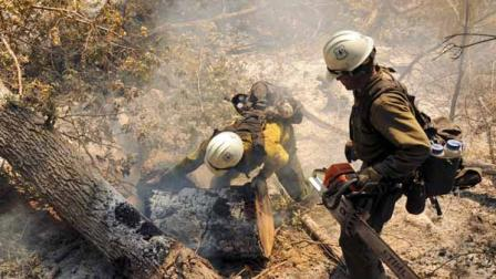 Hundreds evacuated as Colorado, New Mexico fires grow | abc30.com