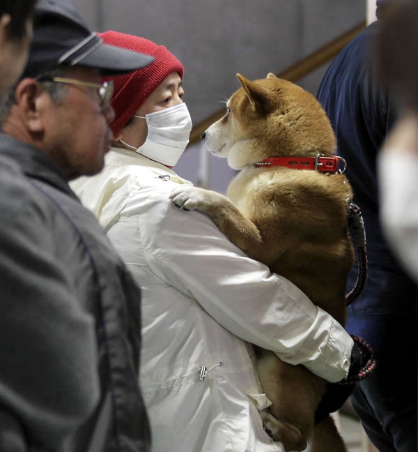 A man holds his dog as they wait to be scanned for radiation exposure at a temporary scanning center for residents living close to the quake-damaged Fukushima Dai-ichi nuclear power plant Wednesday, March 16, 2011, in Koriyama, Fukushima Prefecture, Japan. (AP Photo/Gregory Bull)
