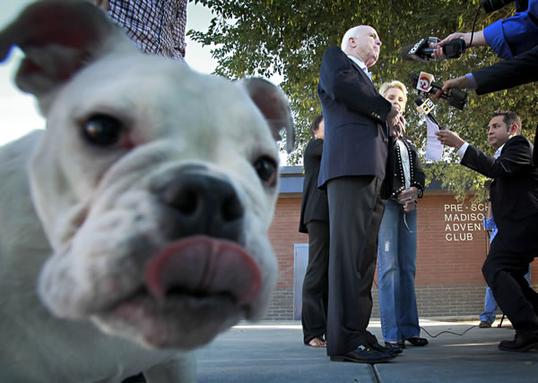 "<div class=""meta image-caption""><div class=""origin-logo origin-image ""><span></span></div><span class=""caption-text"">U.S. Sen. John McCain, R-Ariz., and his wife, Cindy McCain, addresses the media as he leaves a polling station in Phoenix as Apollo, a dog owned by McCain's son Jimmy, licks the camera on Tuesday, Nov. 2, 2010. (AP Photo/Matt York)  </span></div>"