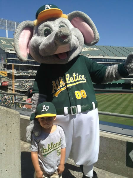"<div class=""meta ""><span class=""caption-text "">If you're a loud and proud A's fan, send us your photos and they could be featured on TV!  uReport@kgo-tv.com  (KGO Photo/ submitted via uReport)</span></div>"