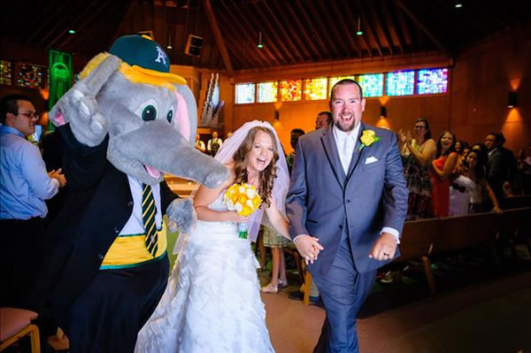 "<div class=""meta ""><span class=""caption-text "">""That awesome moment when Stomper crashed my daughter's wedding, July 20, 2013 (Jessika and Christopher Suter)  (Photo by Funny Bunny Photo)"".  If you're a proud Oakland A's fan send your photos to uReport@kgo-tv.com and they could be featured on TV! (KGO Photo/ submitted via uReport)</span></div>"