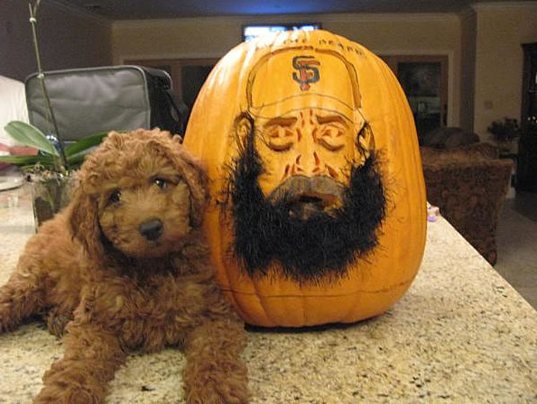 Go Giants ? enjoy the photos ....  pumpkins of the freak and fear the beard! From Donna Petersen in Dublin, CA.  (Photo submitted by Erika via uReport)