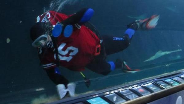 Diver sporting 49ers gear at Aquarium of the Bay (Submitted via uReport)