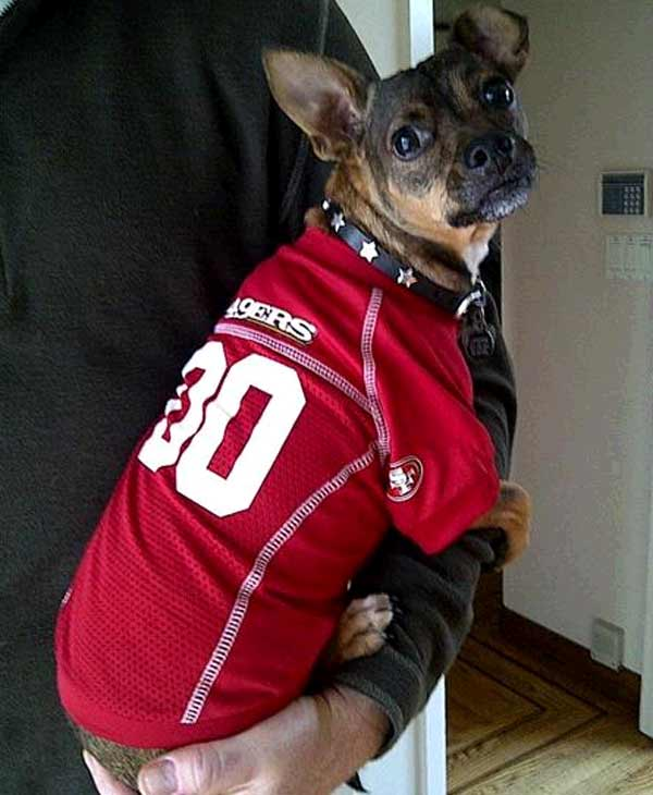 Cooper is ready to win today! (Submitted by Tom in Alamo via uReport)