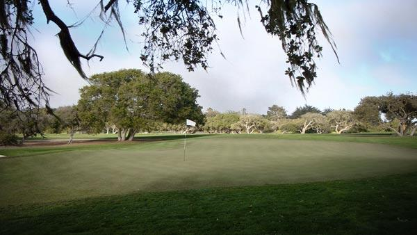 Bayonet and Black Horse golf courses