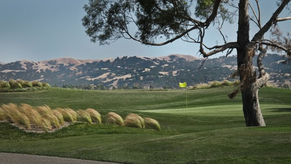Las Positas Scenic. The City of Livermore did a fine job of updating and beautifying this golf complex. <span class=meta>(ABC7&#39;s Wayne Freedman)</span>