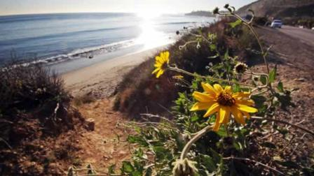 Coastal Calif. to see cooler temps through spring