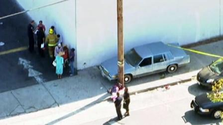 A car plowed into a group of parents and children outside a Los Angeles elementary school and eight people have been injured.