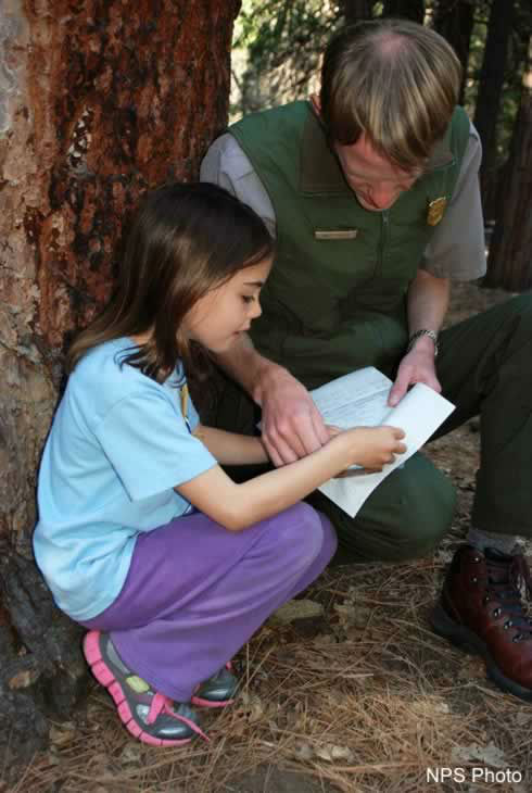Evie, the Yosemite junior park ranger who sent an apology letter when she inadvertently took home two sticks, got the chance to return the sticks to the park over the weekend.