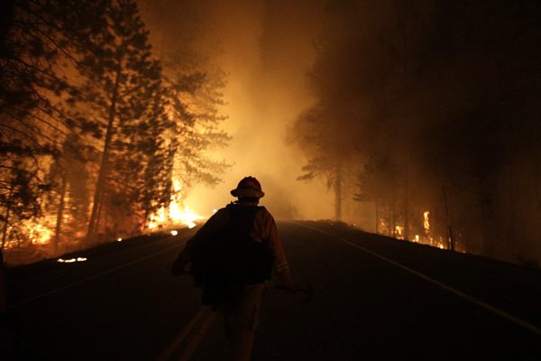 A firefighter walks along Highway 120 past burning trees as firefighters continues to battle the Rim Fire near Yosemite National Park, Calif., on Sunday, Aug. 25, 2013. Fire crews are clearing brush and setting sprinklers to protect two groves of giant sequoias as a massive week-old wildfire rages along the remote northwest edge of Yosemite National Park. (AP Photo/Jae C. Hong)
